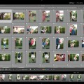 Get Shooting / 1 / My Favorite Lightroom Time Savers